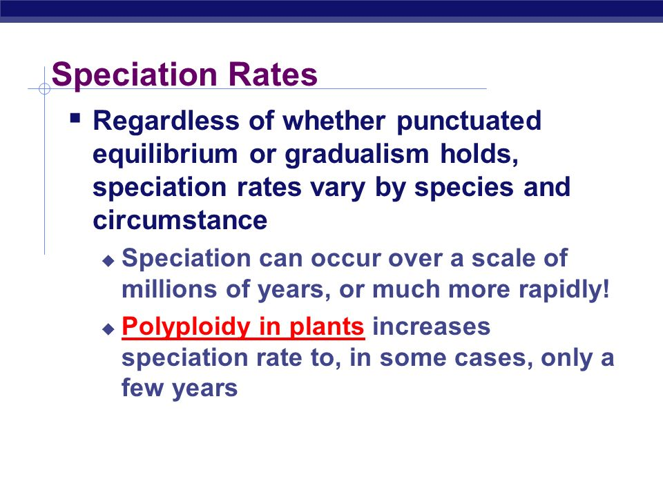 Speciation Rates Regardless of whether punctuated equilibrium or gradualism holds, speciation rates vary by species and circumstance.