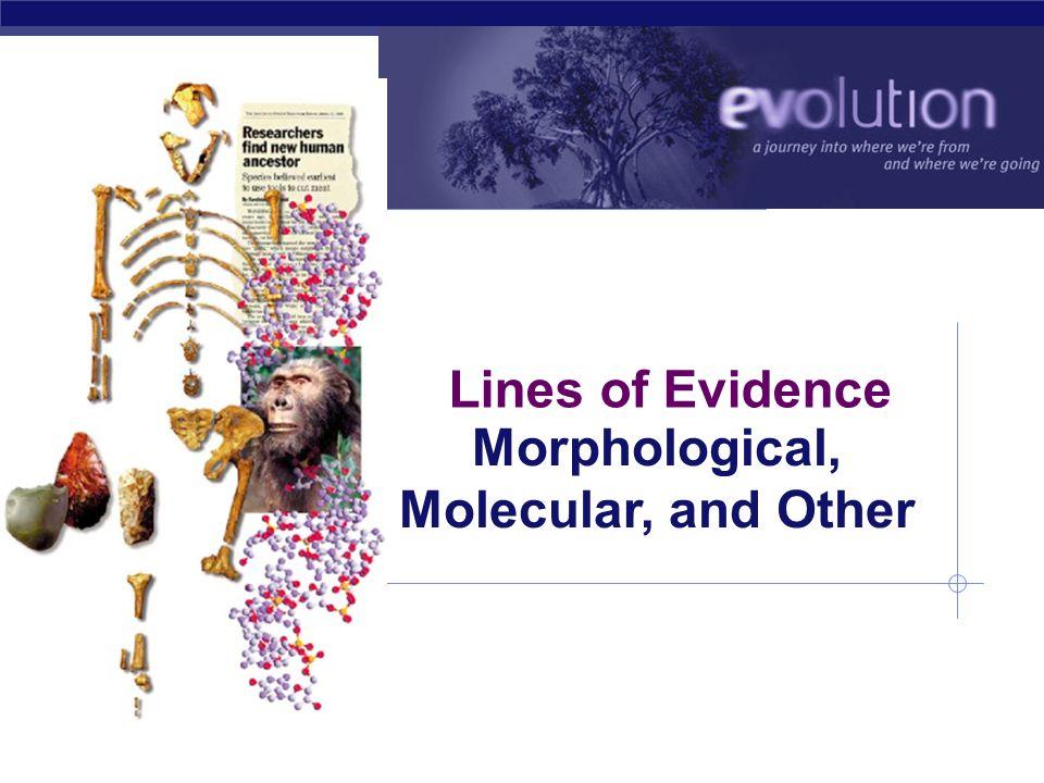 Morphological, Molecular, and Other