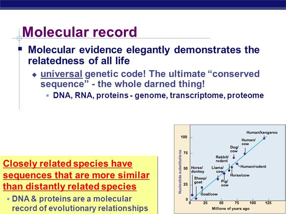 Molecular record Molecular evidence elegantly demonstrates the relatedness of all life.