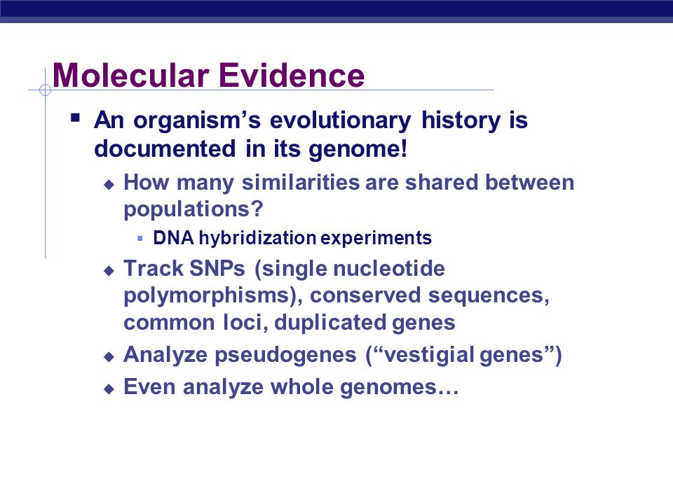 Molecular Evidence An organism's evolutionary history is documented in its genome! How many similarities are shared between populations