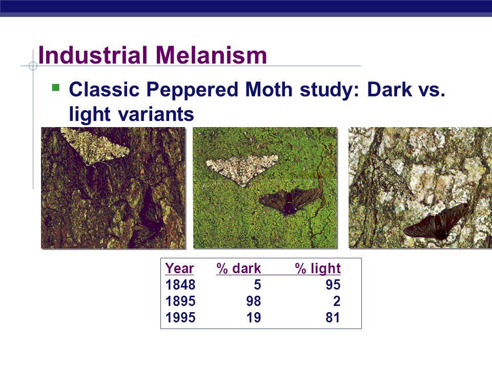 Industrial Melanism Classic Peppered Moth study: Dark vs. light variants. Year % dark % light. 1848 5 95.