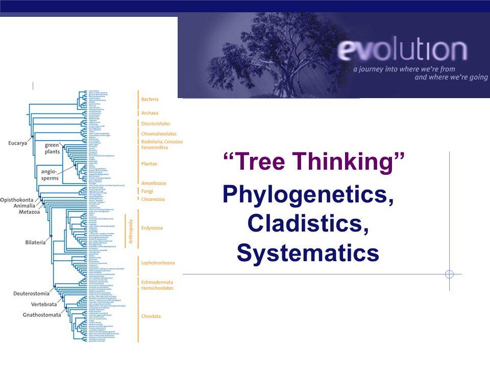 Phylogenetics, Cladistics, Systematics