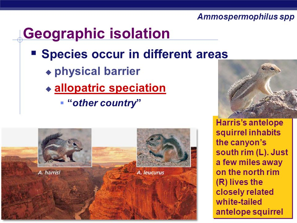 Geographic isolation Species occur in different areas physical barrier