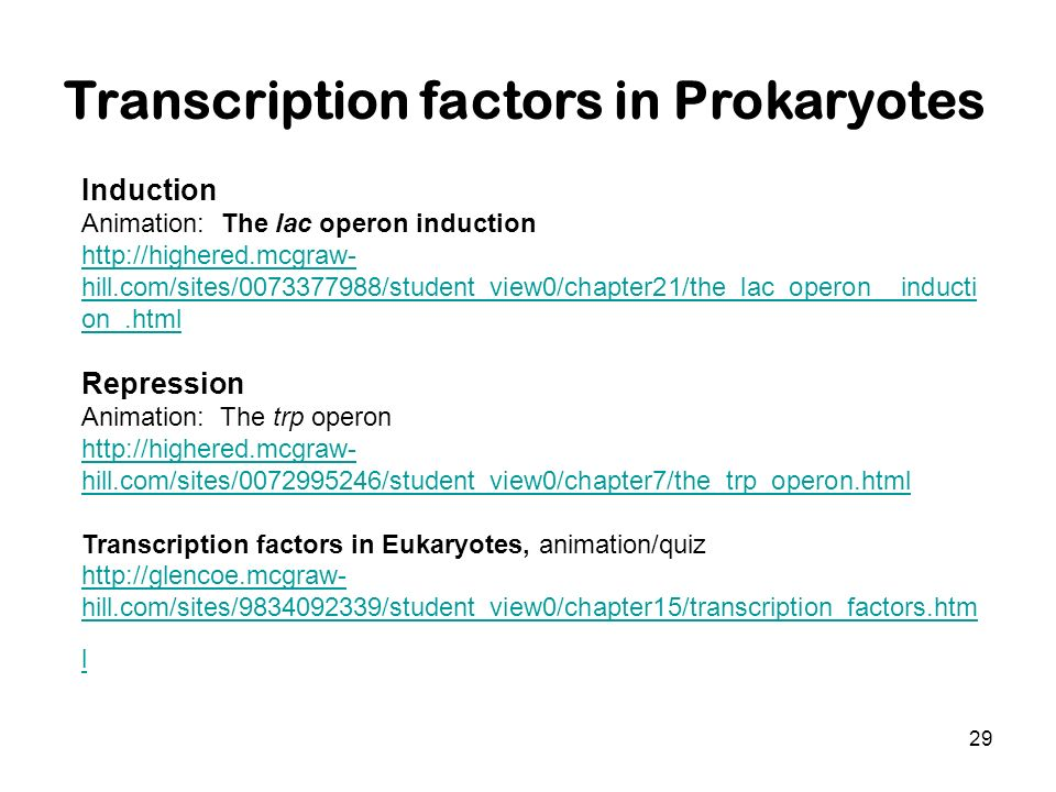 Transcription factors in Prokaryotes