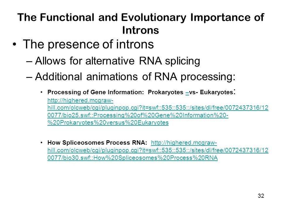 The Functional and Evolutionary Importance of Introns