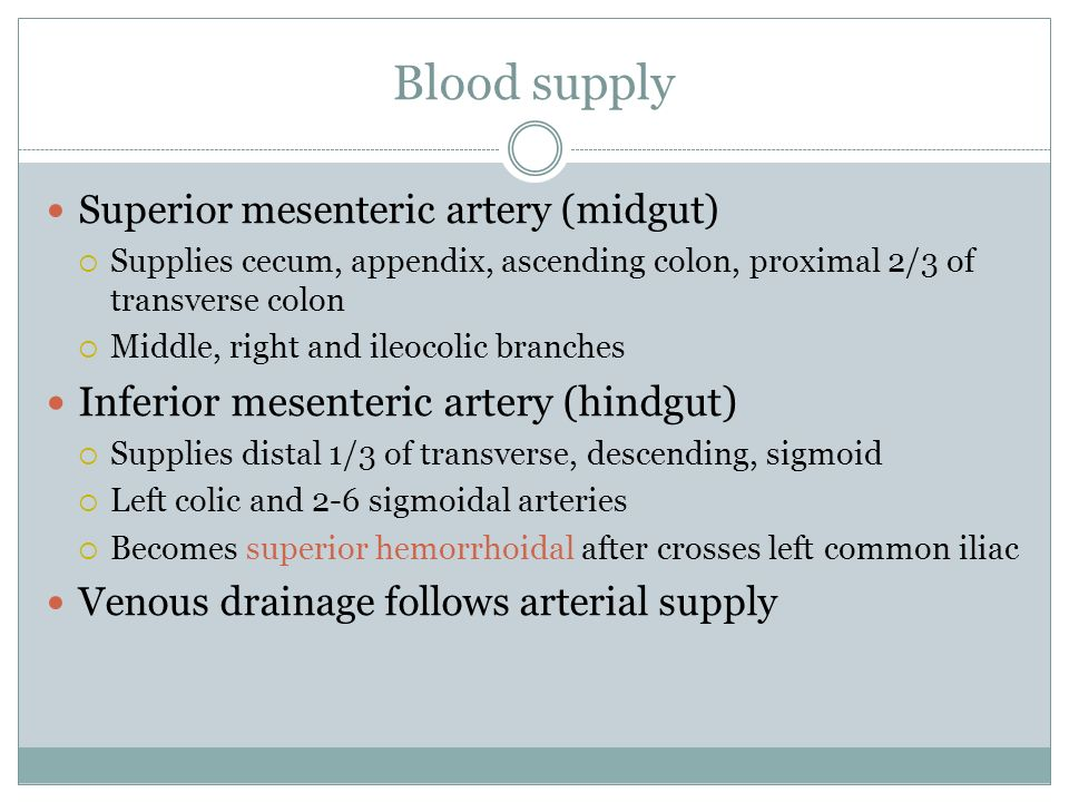 Blood supply Inferior mesenteric artery (hindgut)