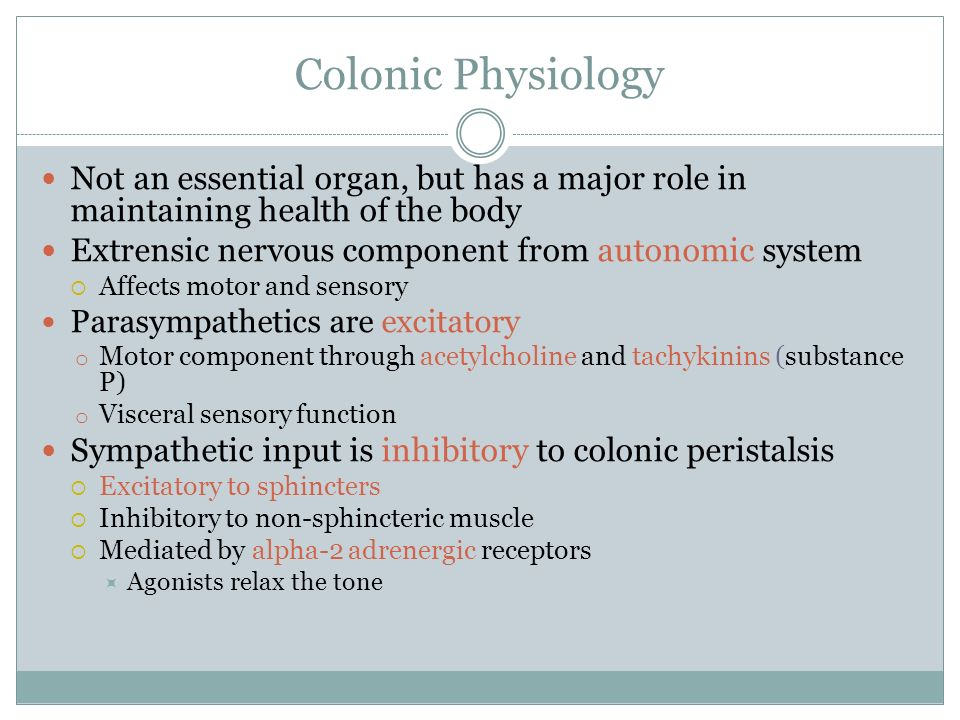 Colonic Physiology Not an essential organ, but has a major role in maintaining health of the body. Extrensic nervous component from autonomic system.