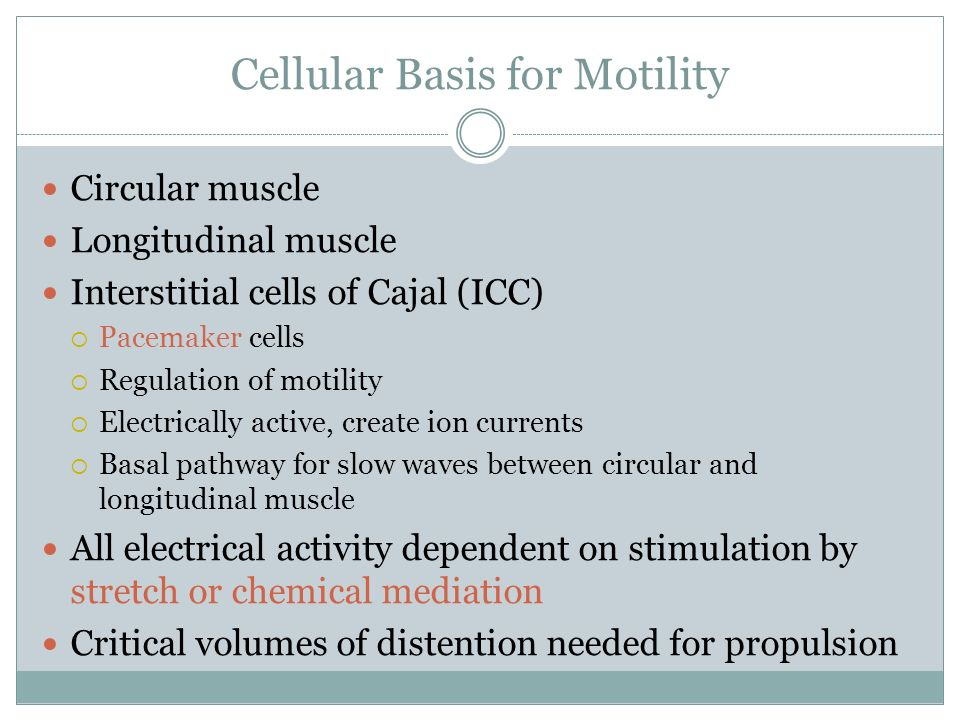 Cellular Basis for Motility