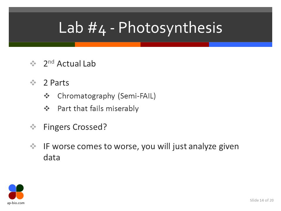 Lab #4 - Photosynthesis 2nd Actual Lab 2 Parts Fingers Crossed