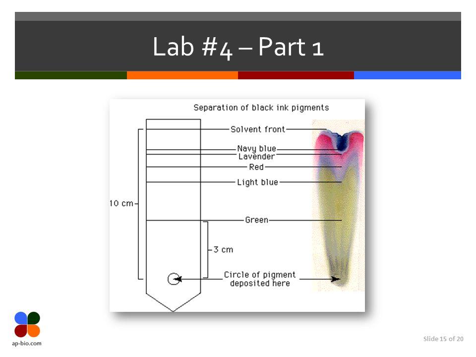 Lab #4 – Part 1