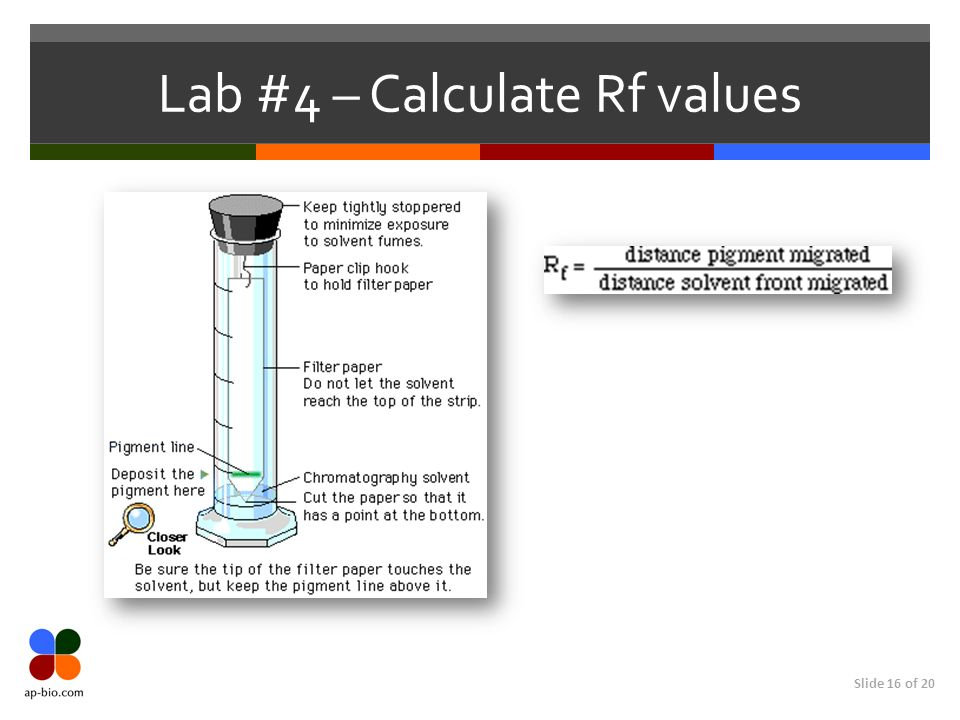 Lab #4 – Calculate Rf values