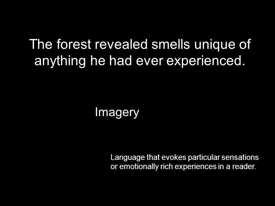 The forest revealed smells unique of anything he had ever experienced.