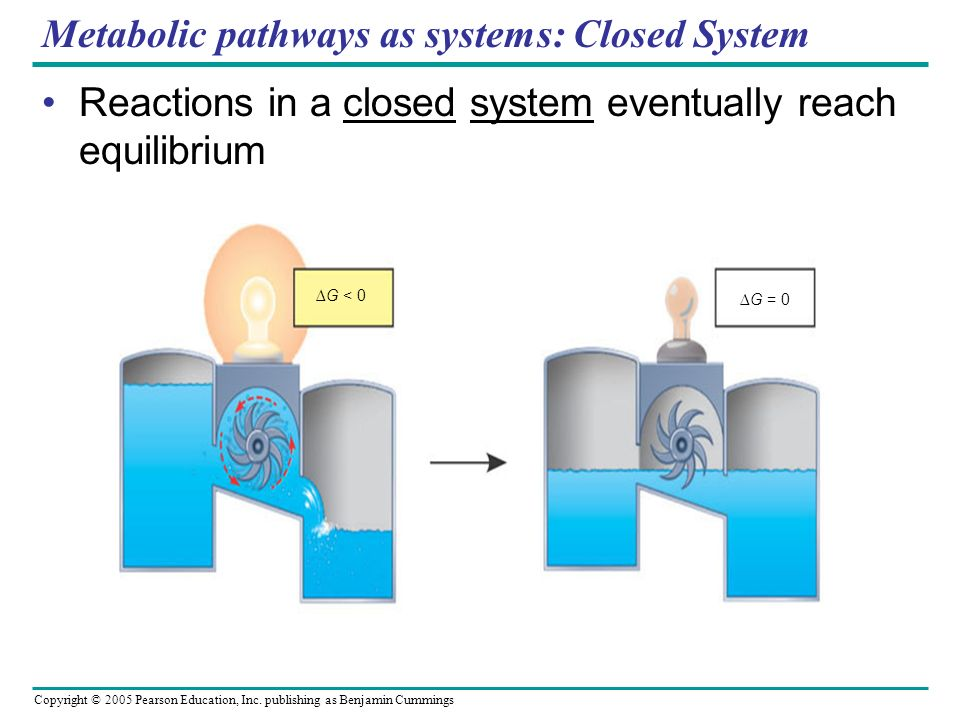 Metabolic pathways as systems: Closed System