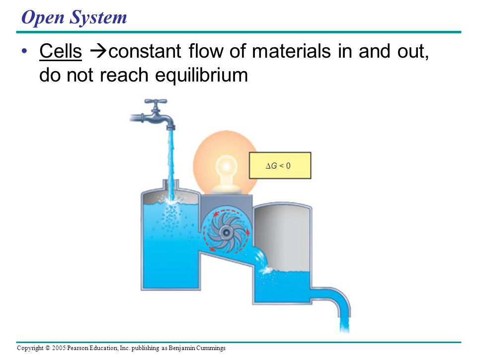 Cells constant flow of materials in and out, do not reach equilibrium