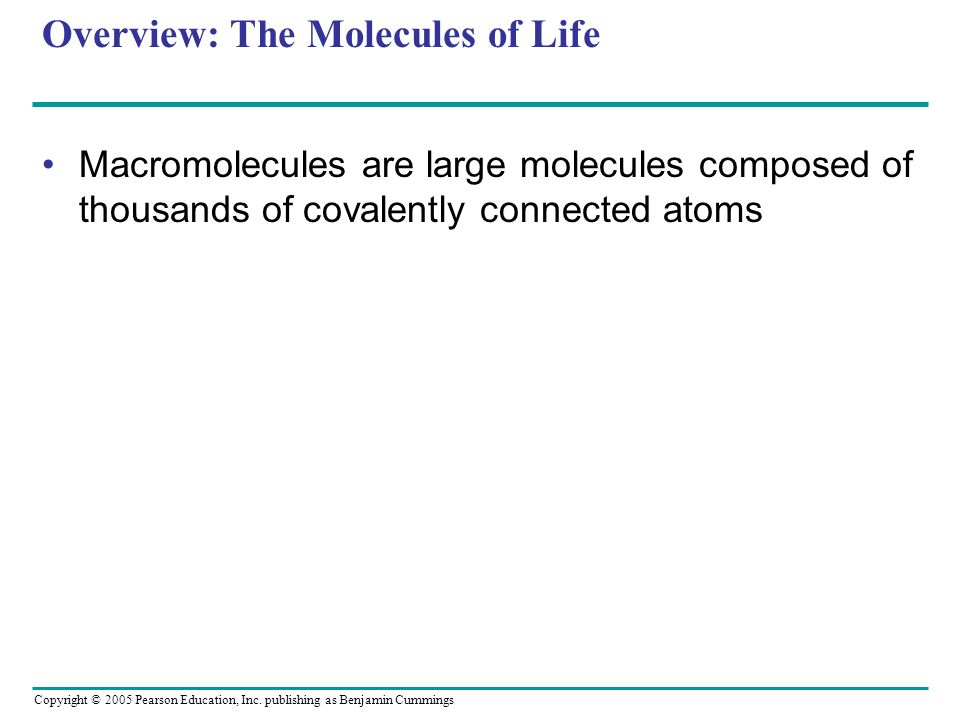 Overview: The Molecules of Life