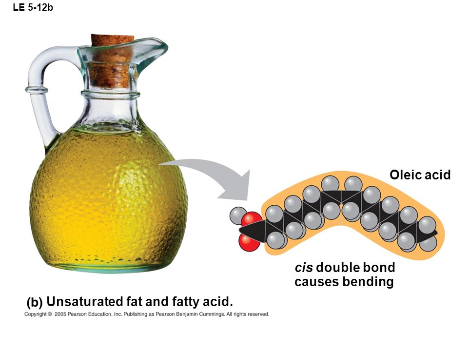 Unsaturated fat and fatty acid.