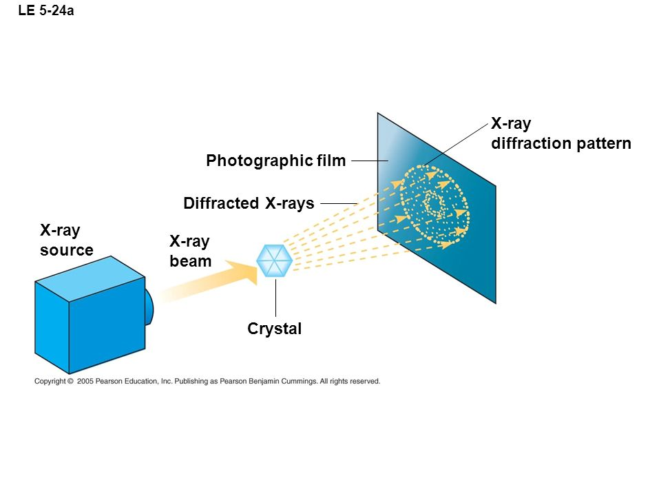 X-ray diffraction pattern Photographic film Diffracted X-rays X-ray