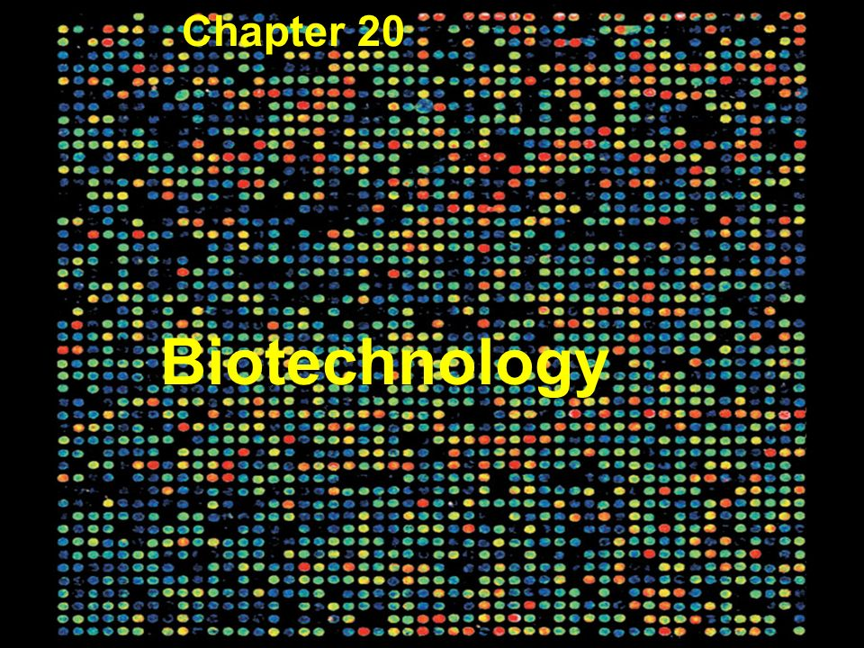 Biotechnology Chapter 20 Figure 20.1