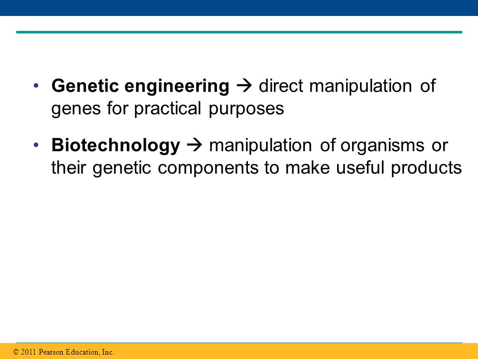 Genetic engineering  direct manipulation of genes for practical purposes
