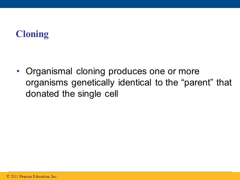 Cloning Organismal cloning produces one or more organisms genetically identical to the parent that donated the single cell.