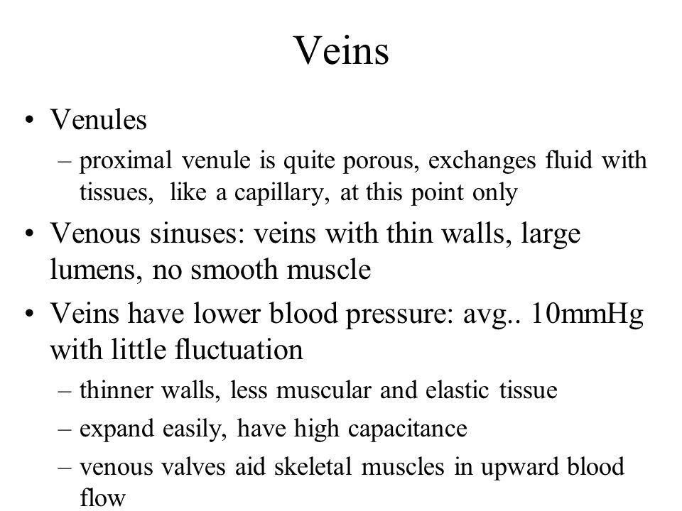 Veins Venules. proximal venule is quite porous, exchanges fluid with tissues, like a capillary, at this point only.