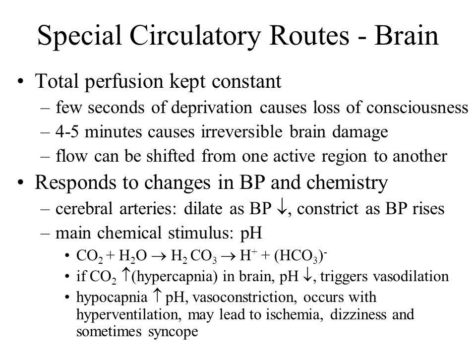 Special Circulatory Routes - Brain