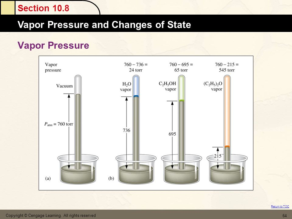 Vapor Pressure Copyright © Cengage Learning. All rights reserved