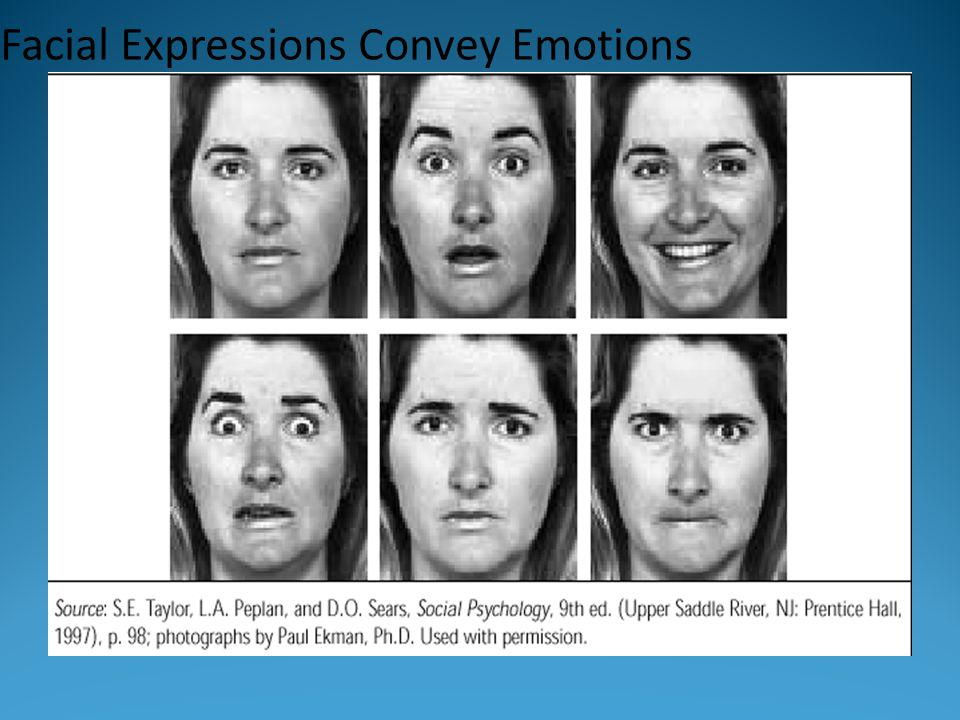 Facial Expressions Convey Emotions