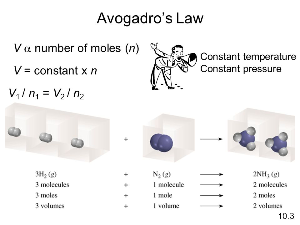Avogadro's Law V a number of moles (n) V = constant x n