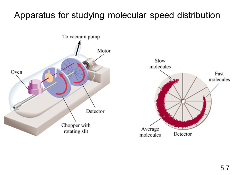 Apparatus for studying molecular speed distribution