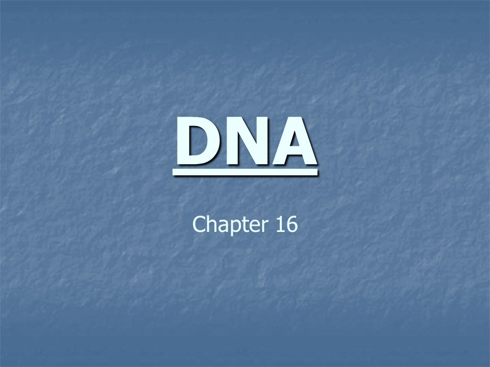 DNA Chapter 16