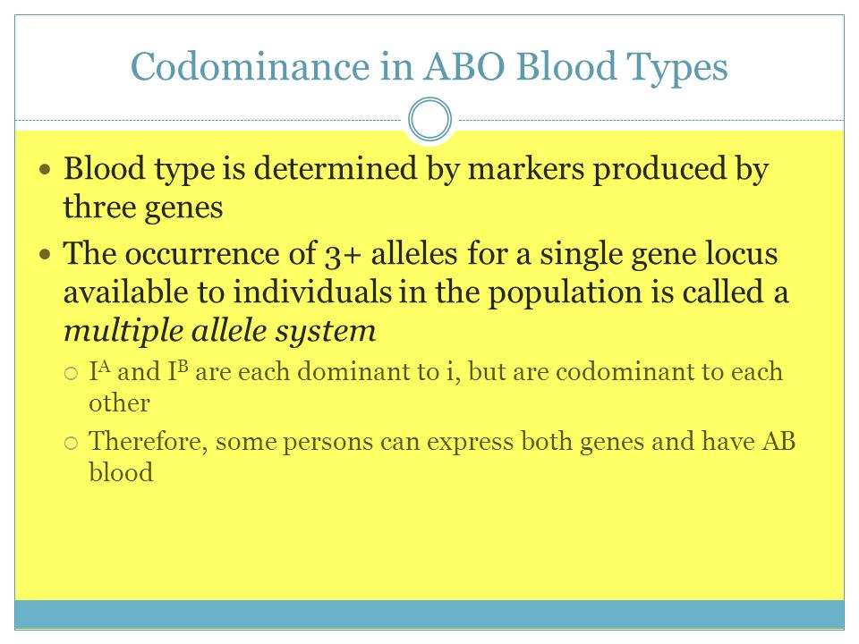 Codominance in ABO Blood Types