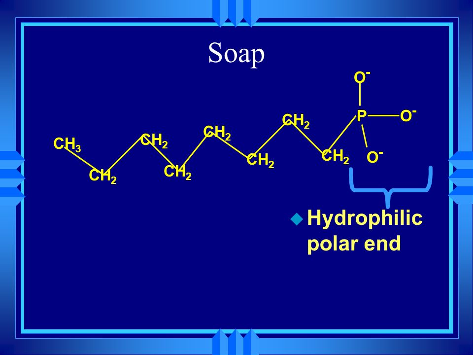 Soap P O- CH3 CH2 Hydrophilic polar end