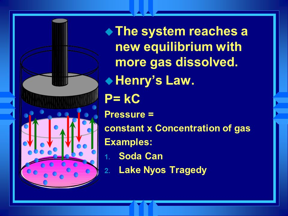 The system reaches a new equilibrium with more gas dissolved.