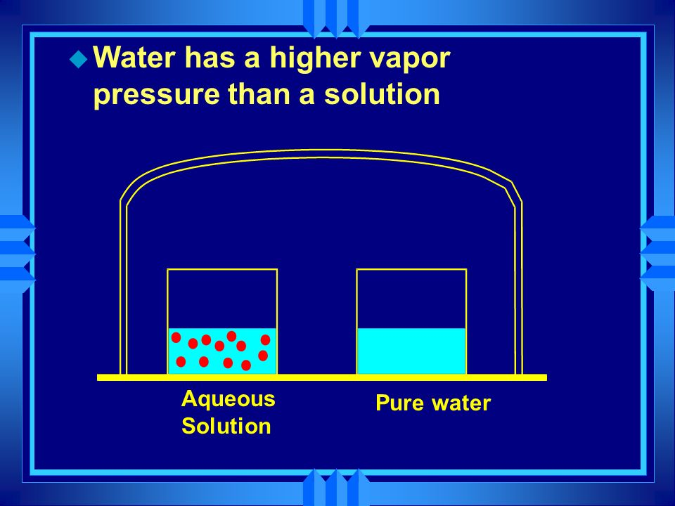 Water has a higher vapor pressure than a solution
