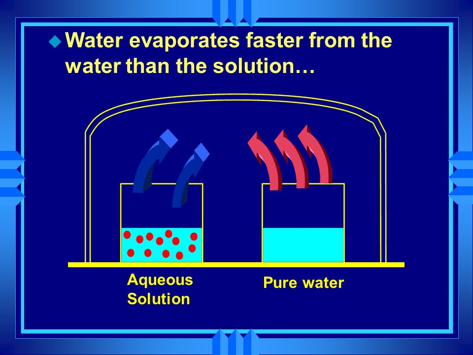 Water evaporates faster from the water than the solution…