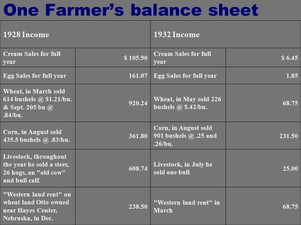 One Farmer's balance sheet