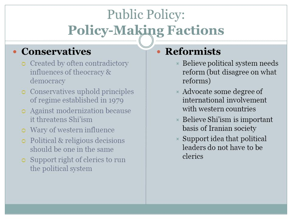 Public Policy: Policy-Making Factions