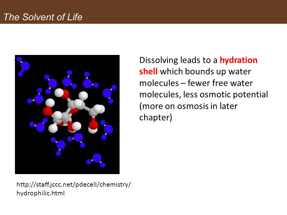 Dissolving leads to a hydration shell which bounds up water molecules – fewer free water molecules, less osmotic potential (more on osmosis in later chapter)