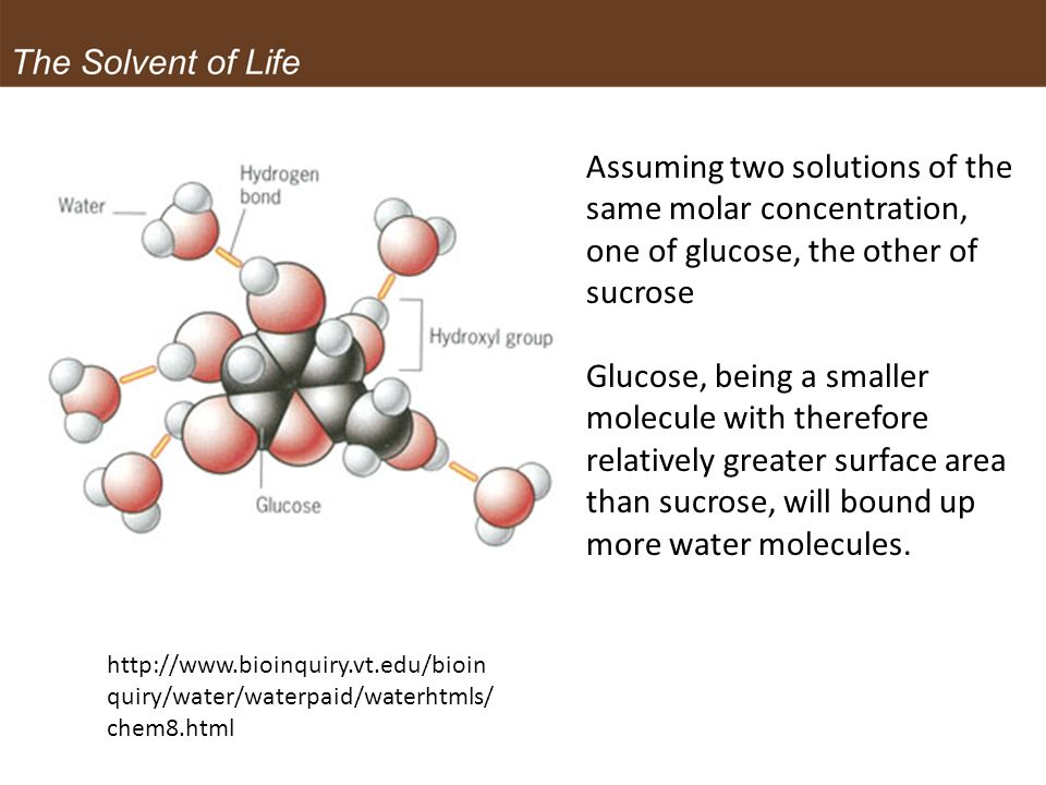 Assuming two solutions of the same molar concentration, one of glucose, the other of sucrose