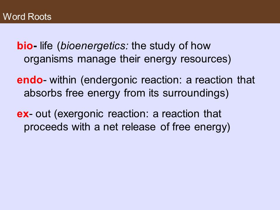 Word Roots bio- life (bioenergetics: the study of how organisms manage their energy resources)
