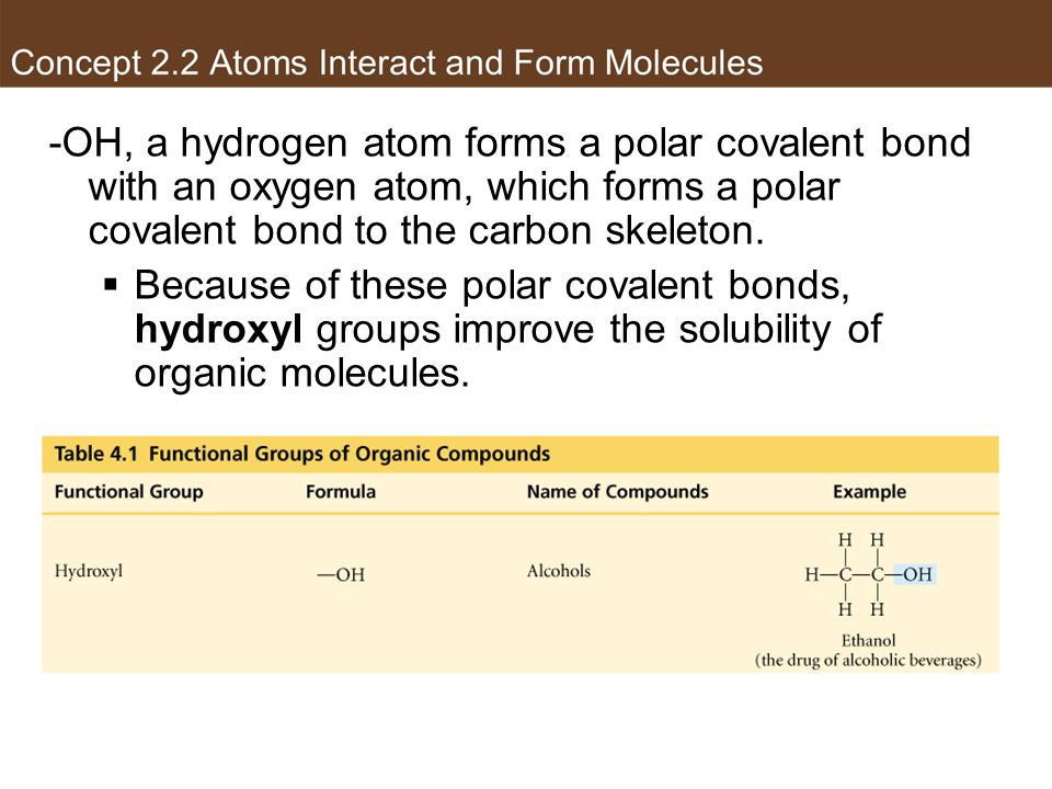 Hydroxyl group -OH, a hydrogen atom forms a polar covalent bond with an oxygen atom, which forms a polar covalent bond to the carbon skeleton.