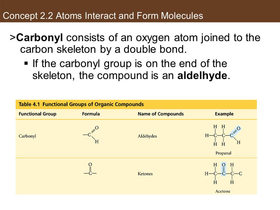 Carbonyl group >Carbonyl consists of an oxygen atom joined to the carbon skeleton by a double bond.