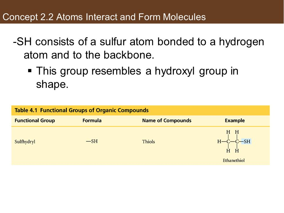 This group resembles a hydroxyl group in shape.