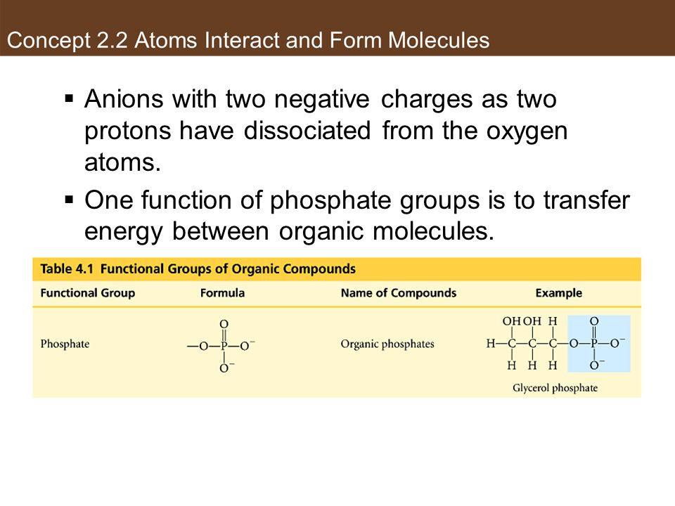 Phosphate group Anions with two negative charges as two protons have dissociated from the oxygen atoms.