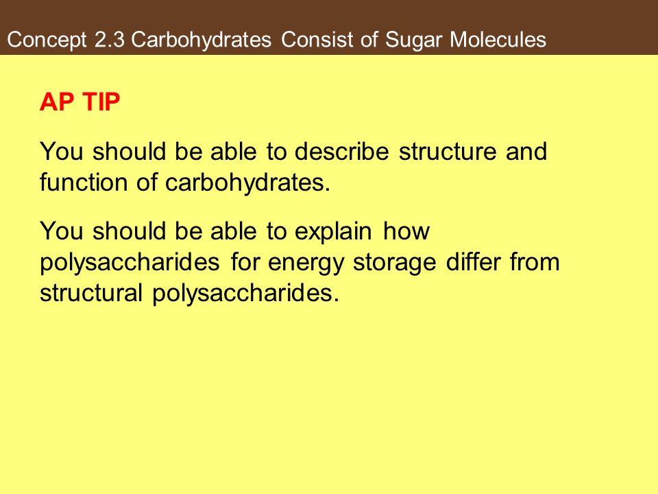 Concept 2.3 Carbohydrates Consist of Sugar Molecules