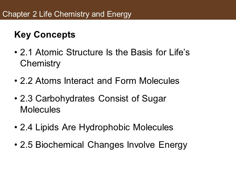 Chapter 2 Life Chemistry and Energy