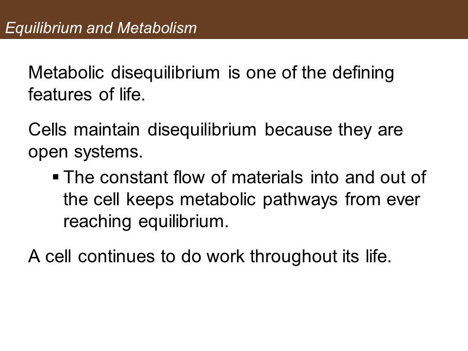 Equilibrium and Metabolism