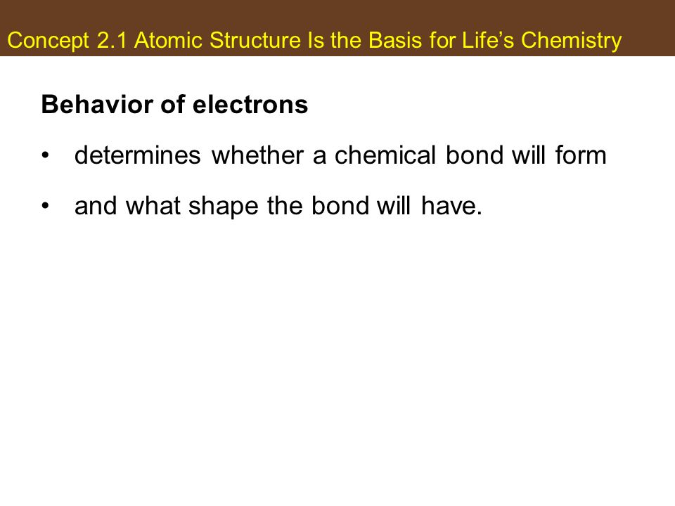 Life Chemistry And Energy  Ppt Download
