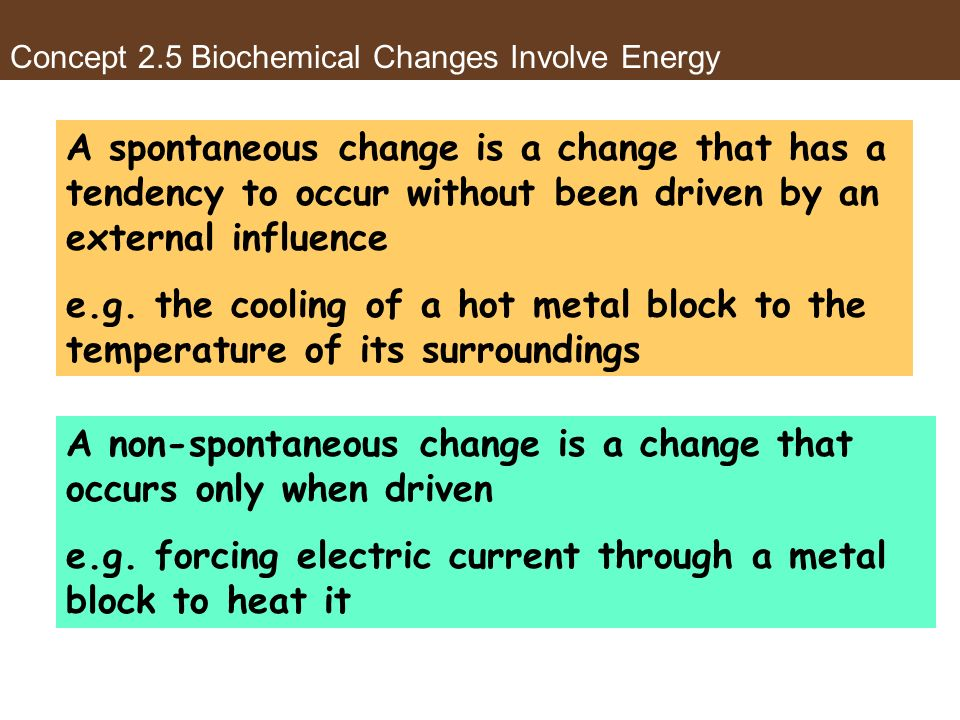 Concept 2.5 Biochemical Changes Involve Energy